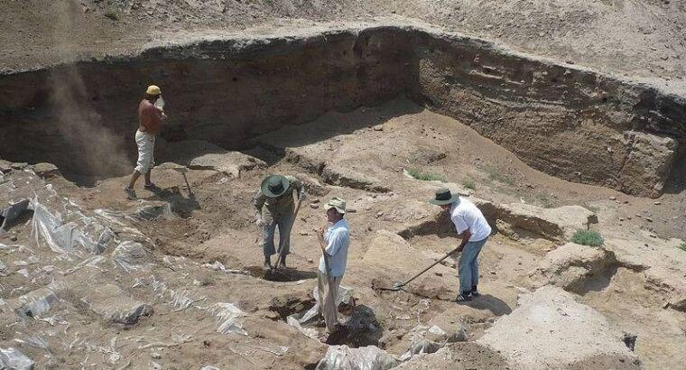 Самая старая в мире мозаика обнаружена археологами в Турции